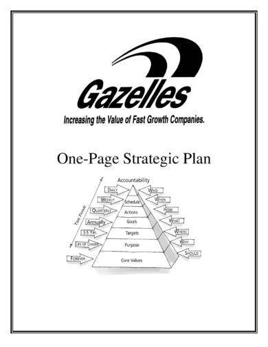 Gazelles One Page Strategic Plan Example1