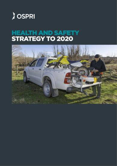 health and safety strategy plan example