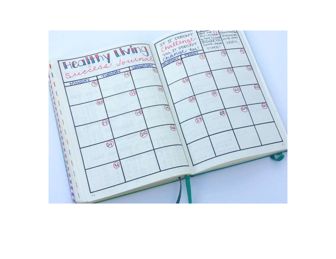 healthy living fitness journal example