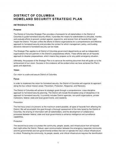 homeland security strategic plan example