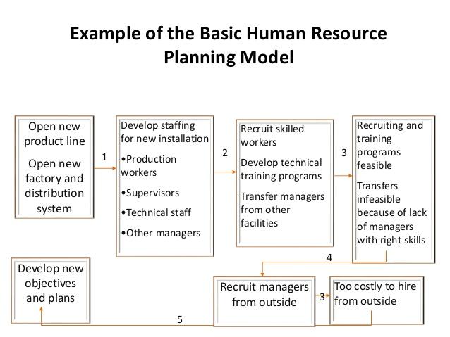 human capital planning template - human capital strategic plan template choice image