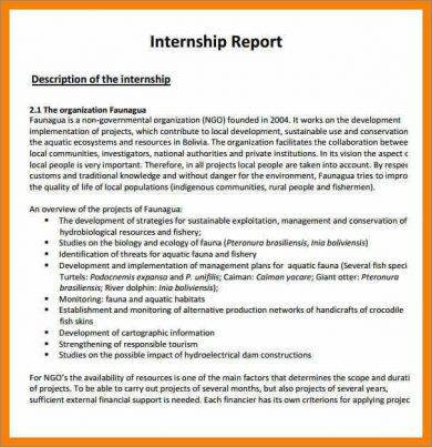 internship report writing format example