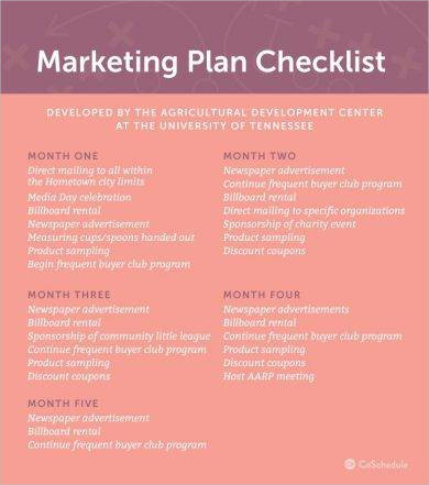 9 marketing strategy business plan examples pdf