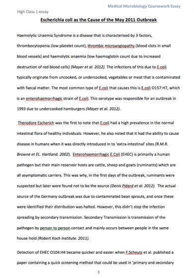 medical microbiology coursework essay escherichi