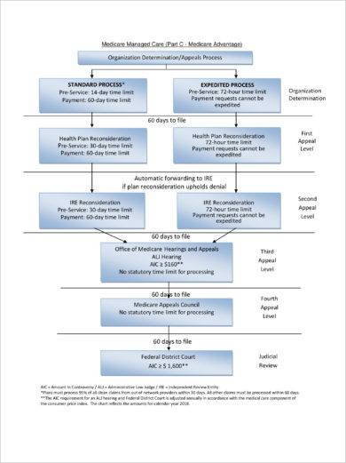 medicare managed care appeals flow chart template example1
