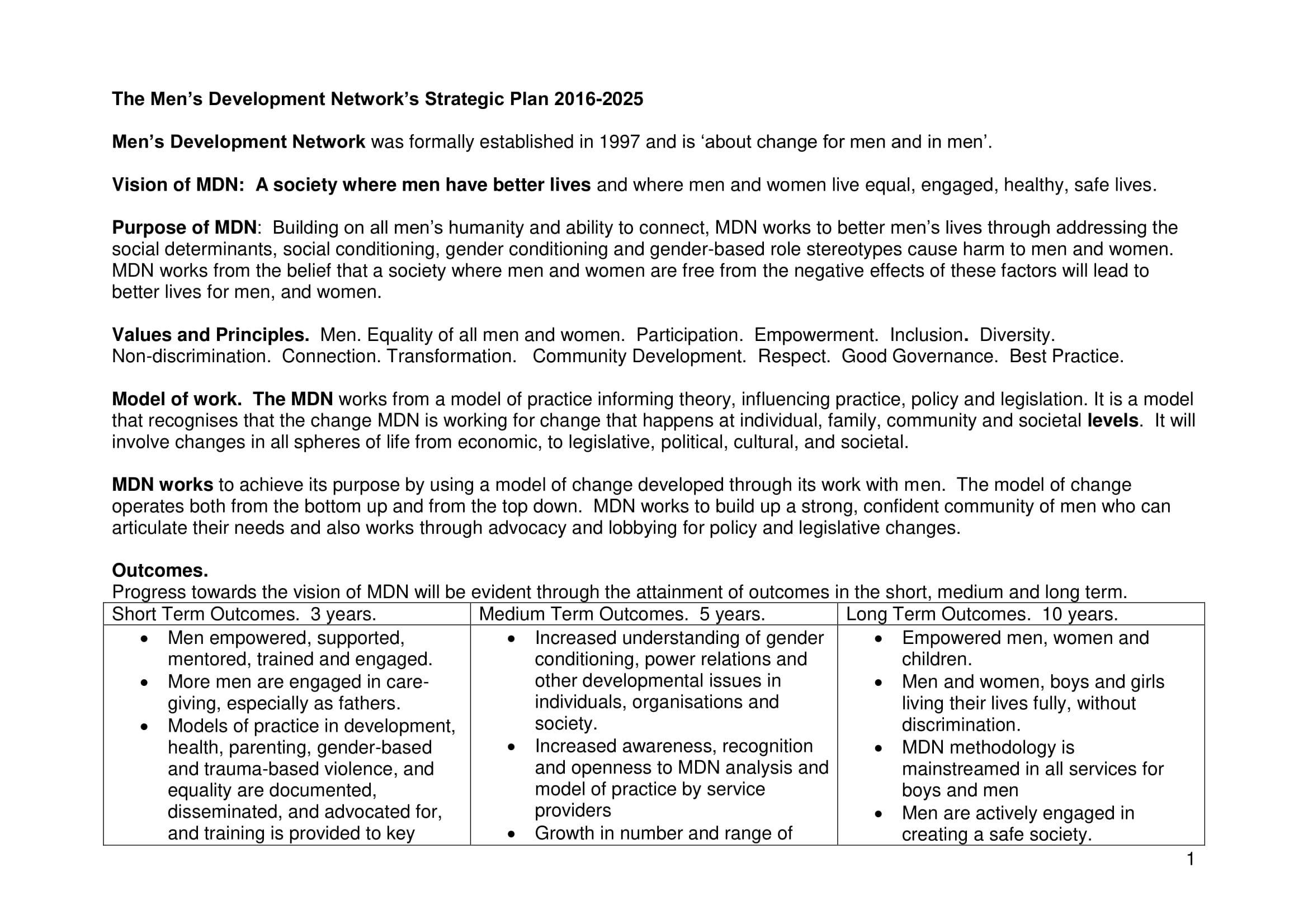 men's development network's strategic plan example