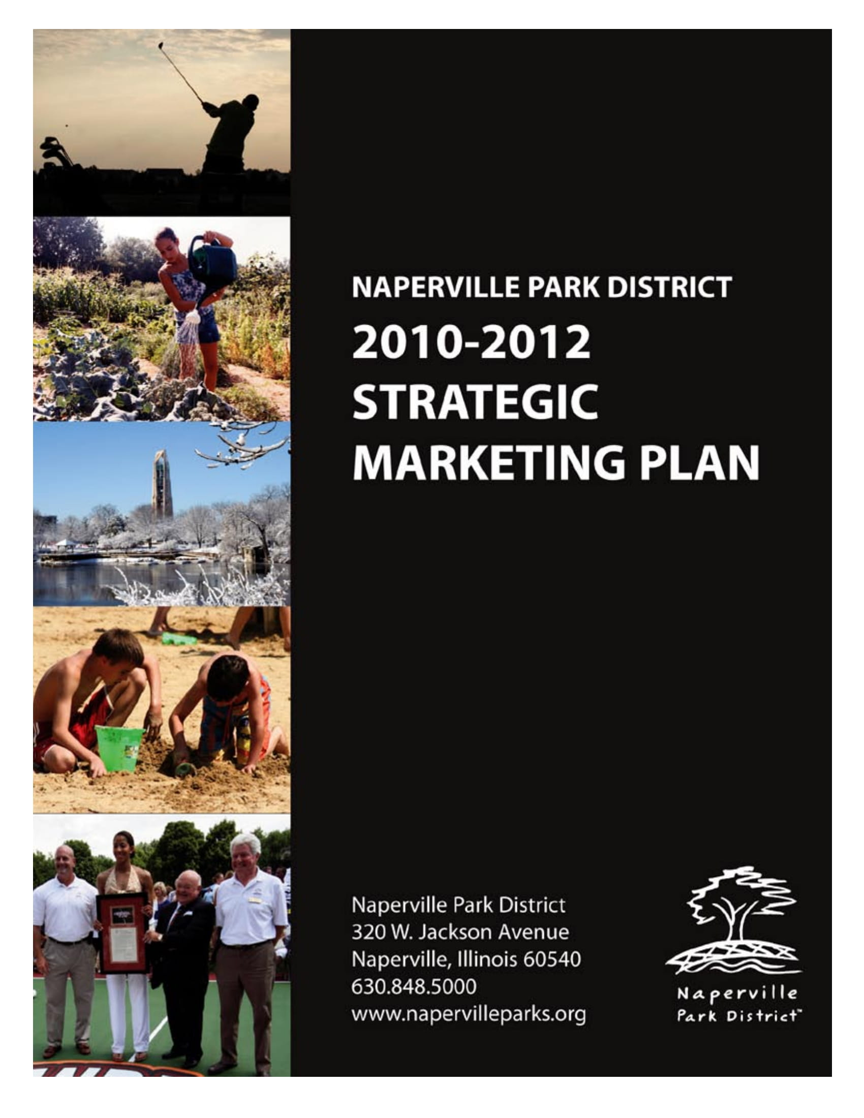 naperville strategic marketing plan example
