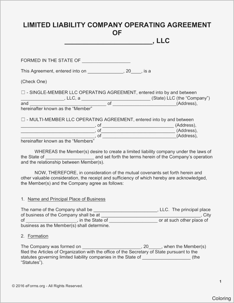 new business operating agreement example
