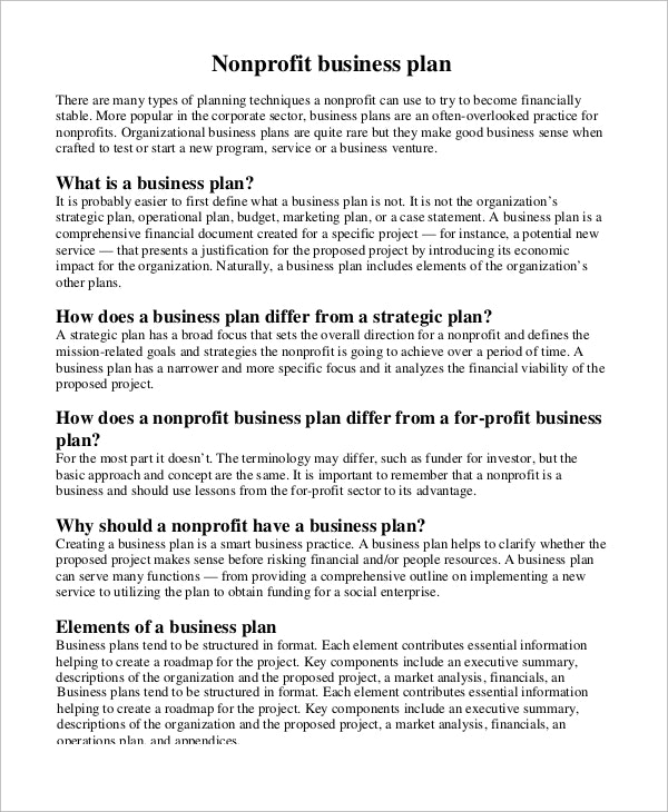 nonprofit business project plan example