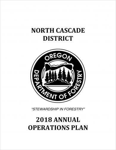 north cascade district annual project operational plan example1