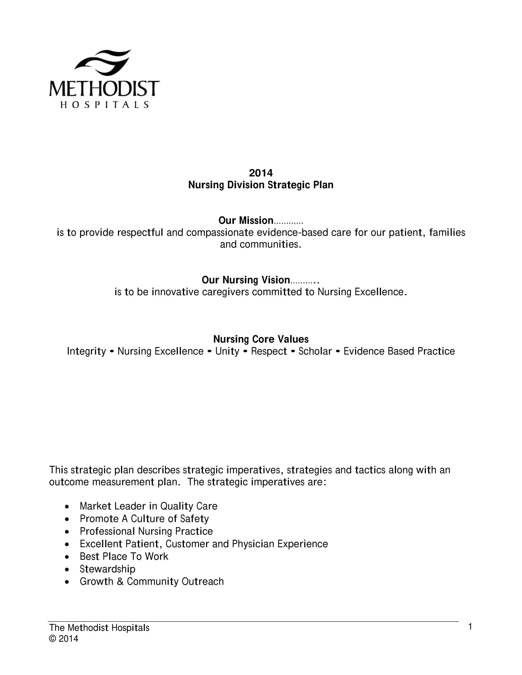 nursing division strategic plan example 01