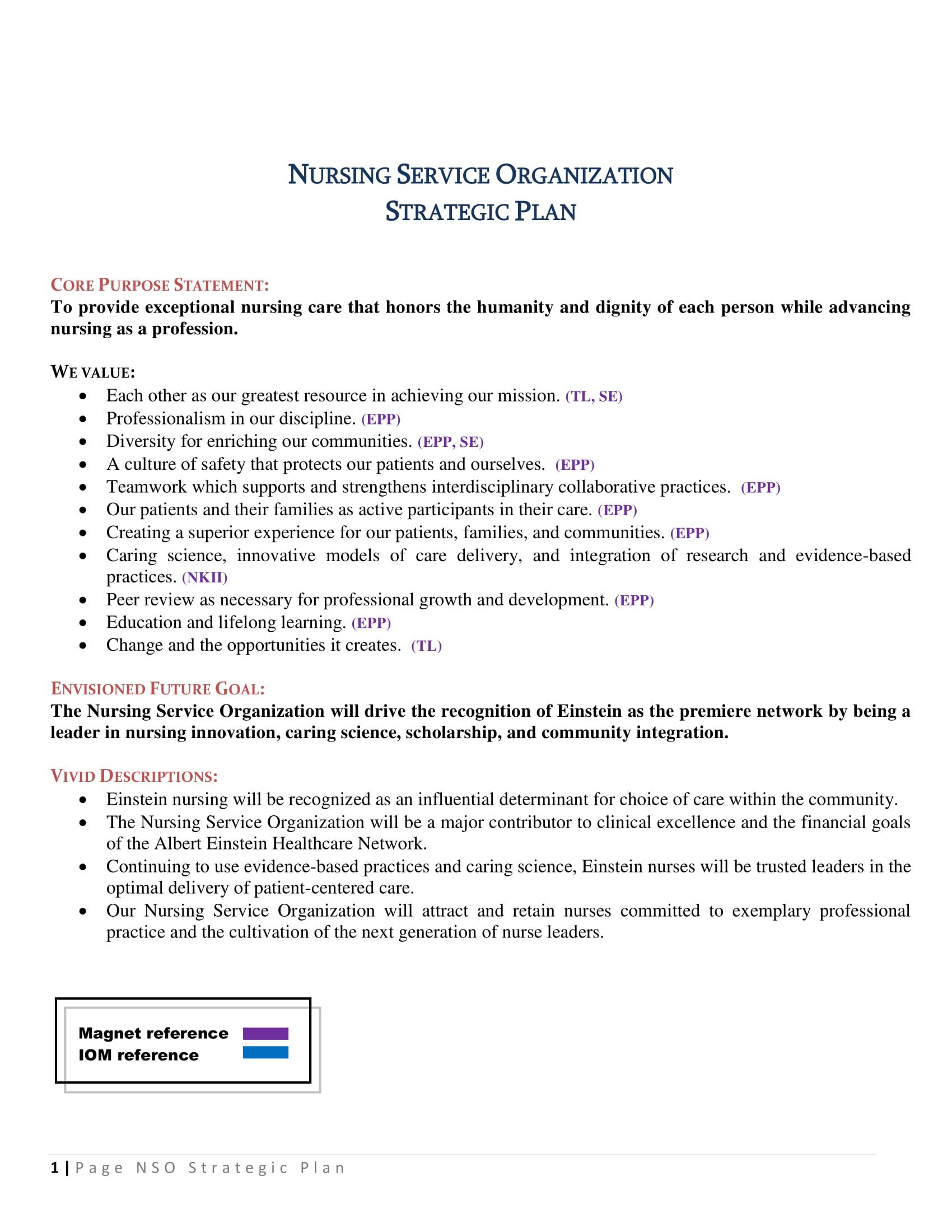 nursing service organization strategic plan example 1