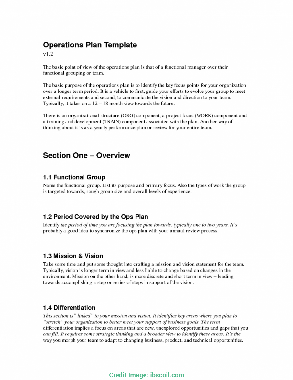 operations plan template