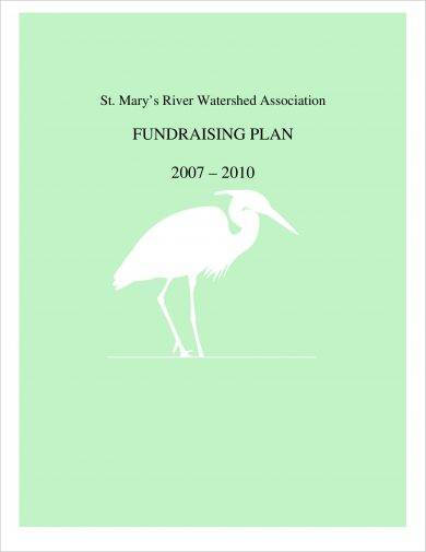 organization annual fundraising plan example1