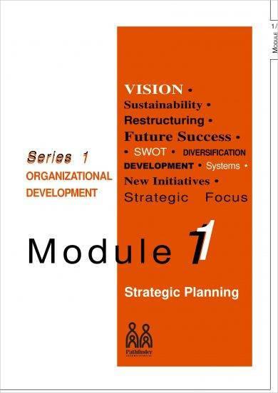 organization brief strategic plan example1