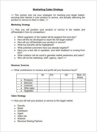 outline for sales and marketing plan example1