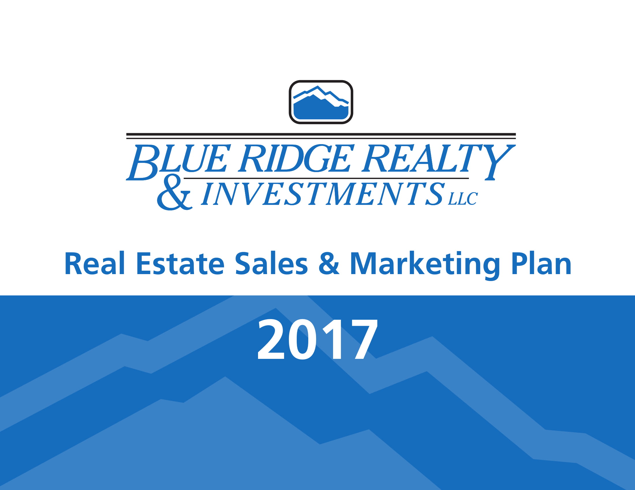 real estate sales and marketing plan example 011