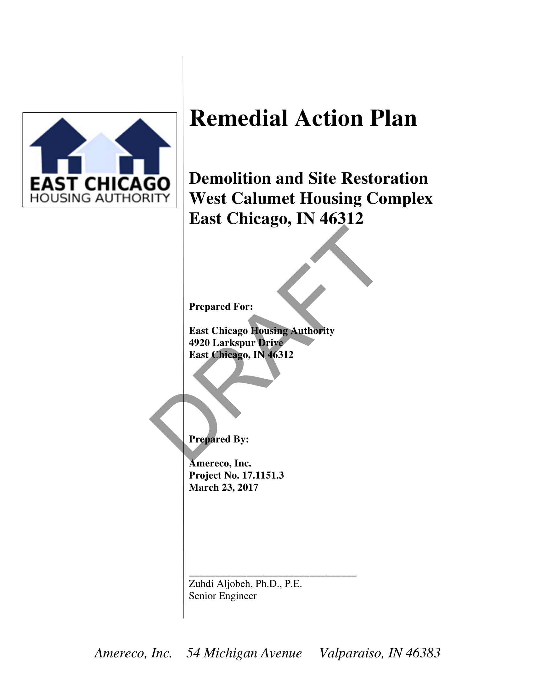remedial action plan draft example 01