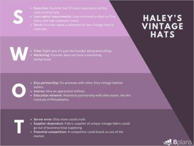 retail swot analysis for haleys example1