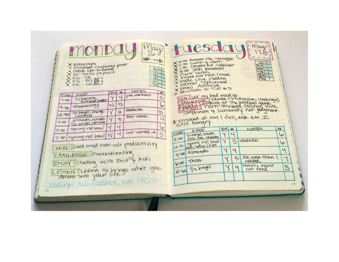 sample daily fitness journal example