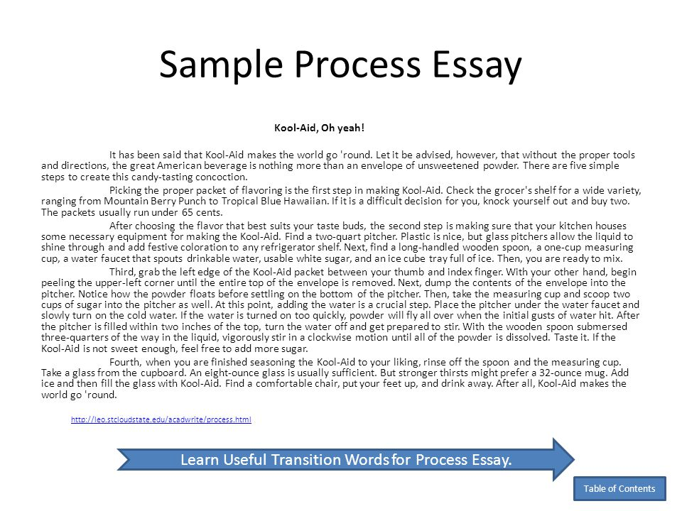 19+ Examples of Process Essays - PDF | Examples