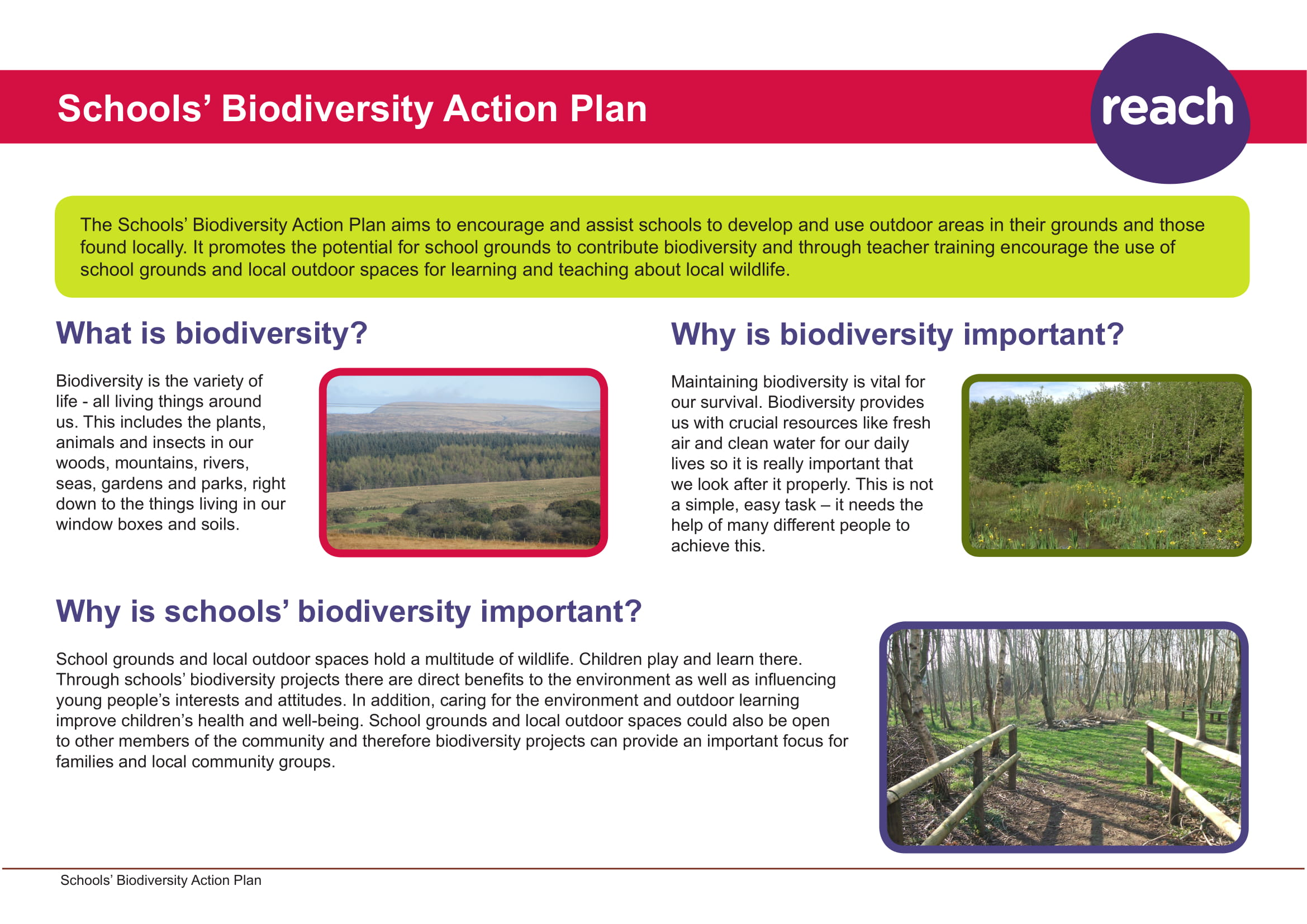 schools biodiversity action plan example 1