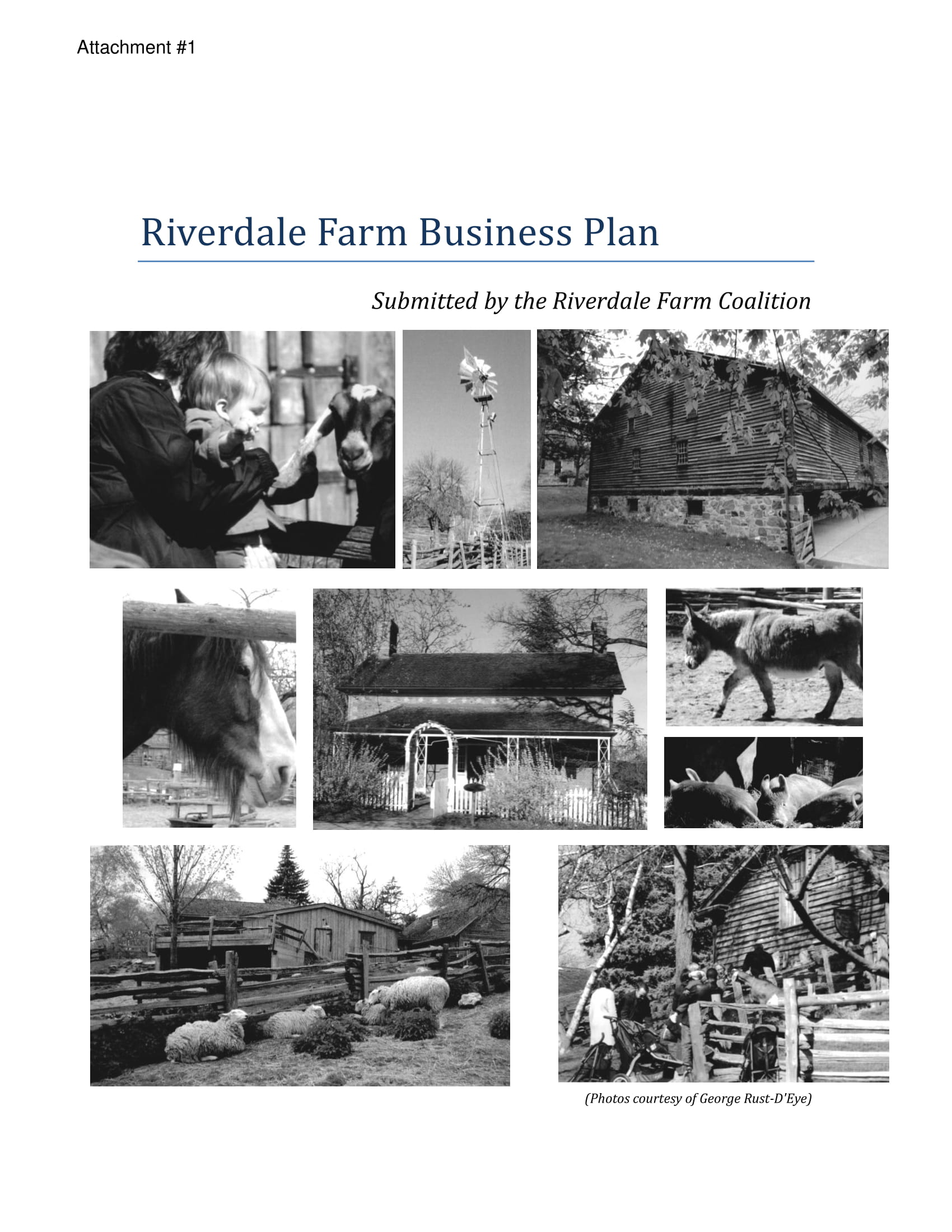 simple farm business plan example 01
