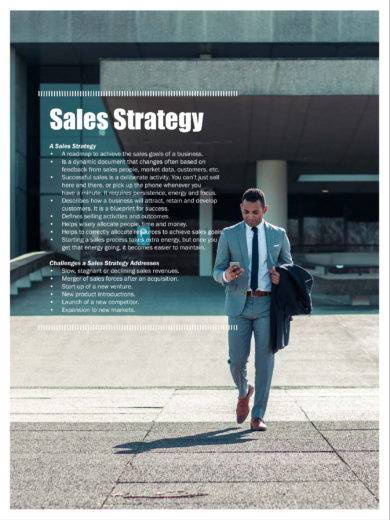 simple sales strategic plan example1
