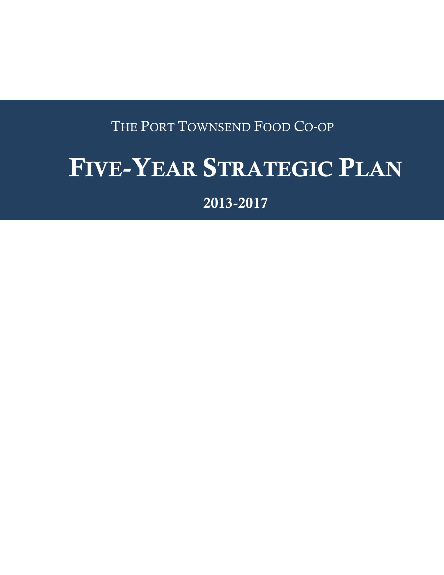 standard 5 year strategic plan example 1