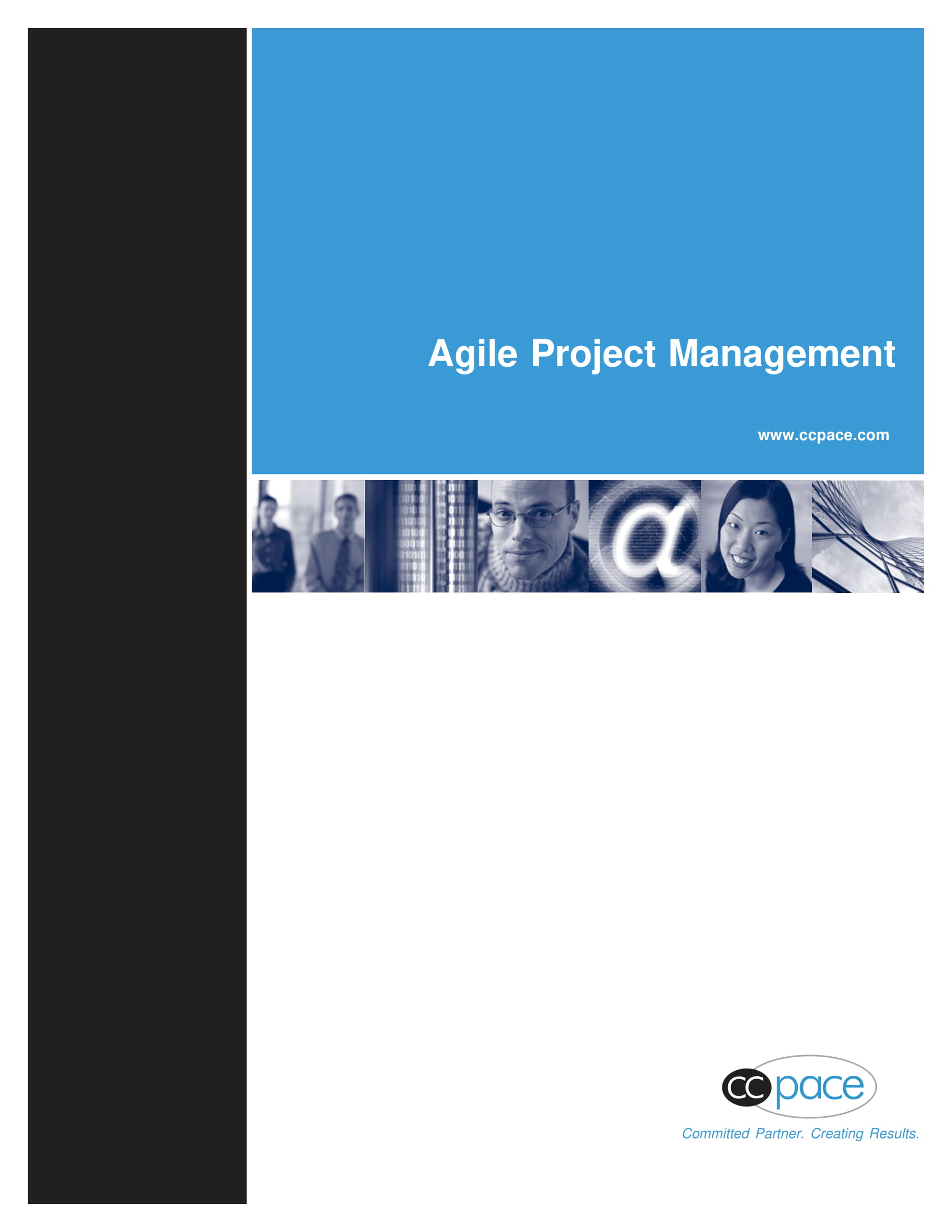 standard agile project management plan example 01