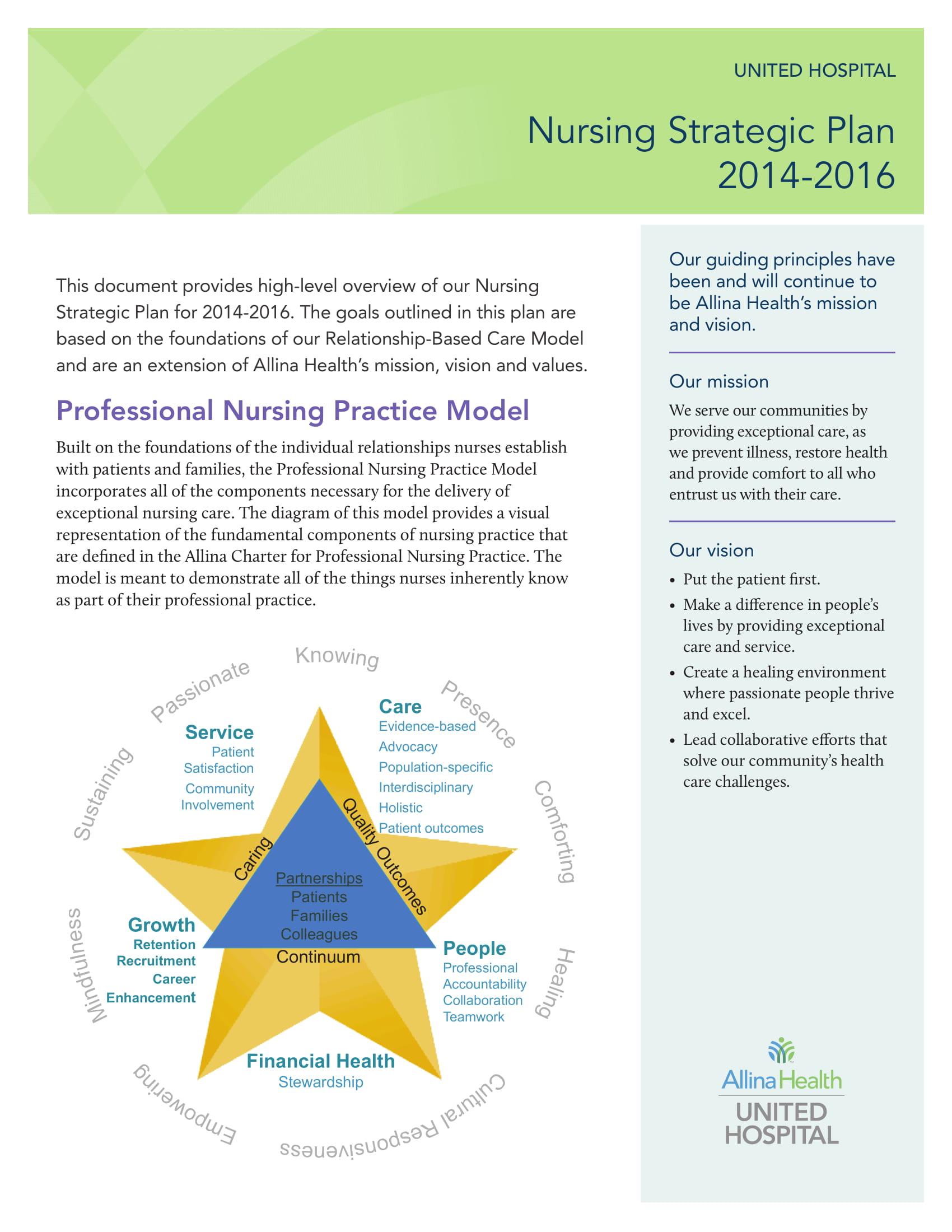 standard nursing strategic plan example 1