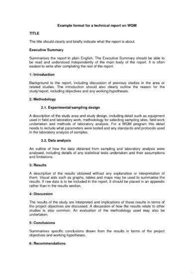 technical report writing format example1