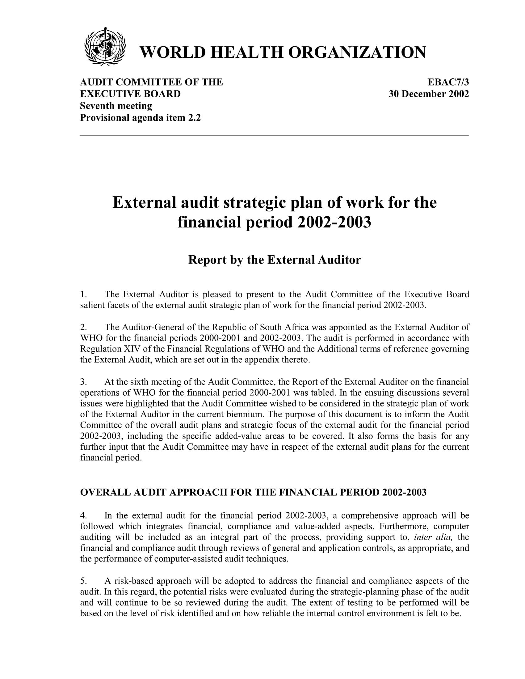 who external audit strategic plan example