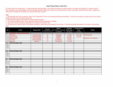 emplate work action plan