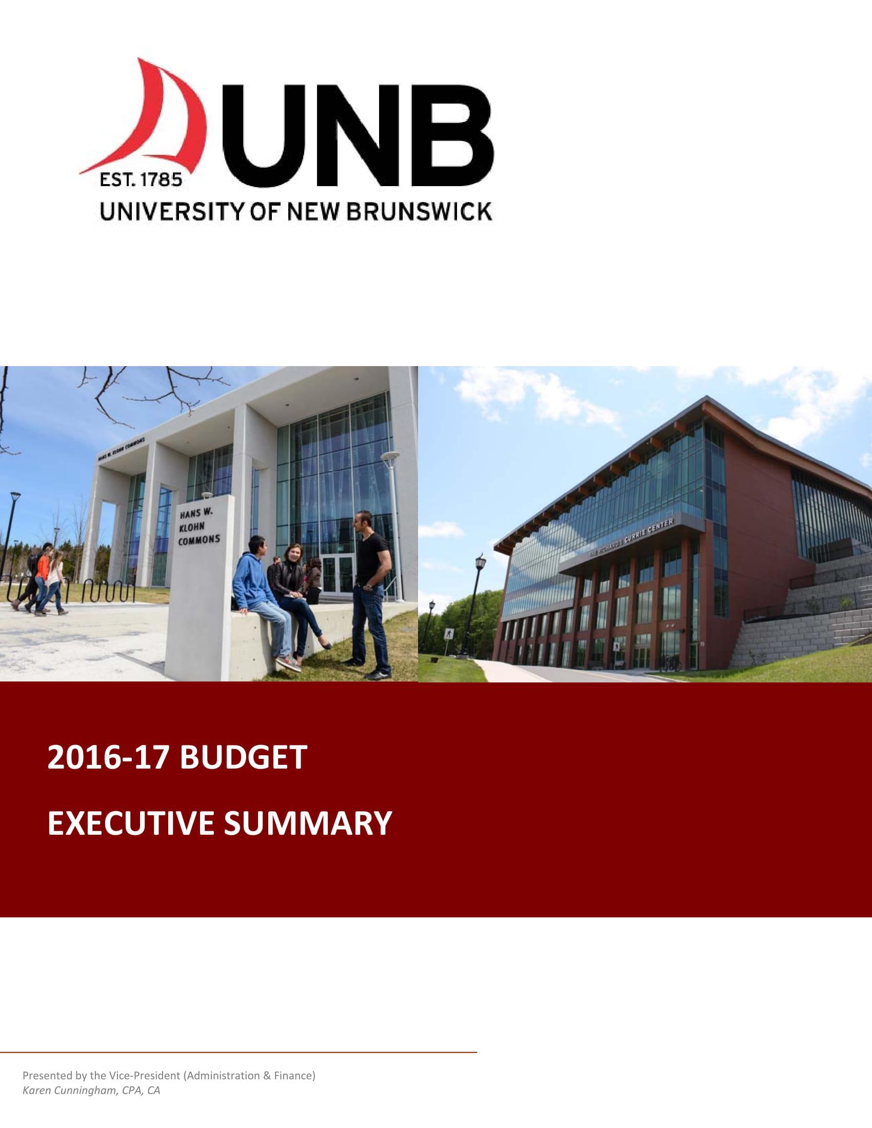 budget executive summary example 1