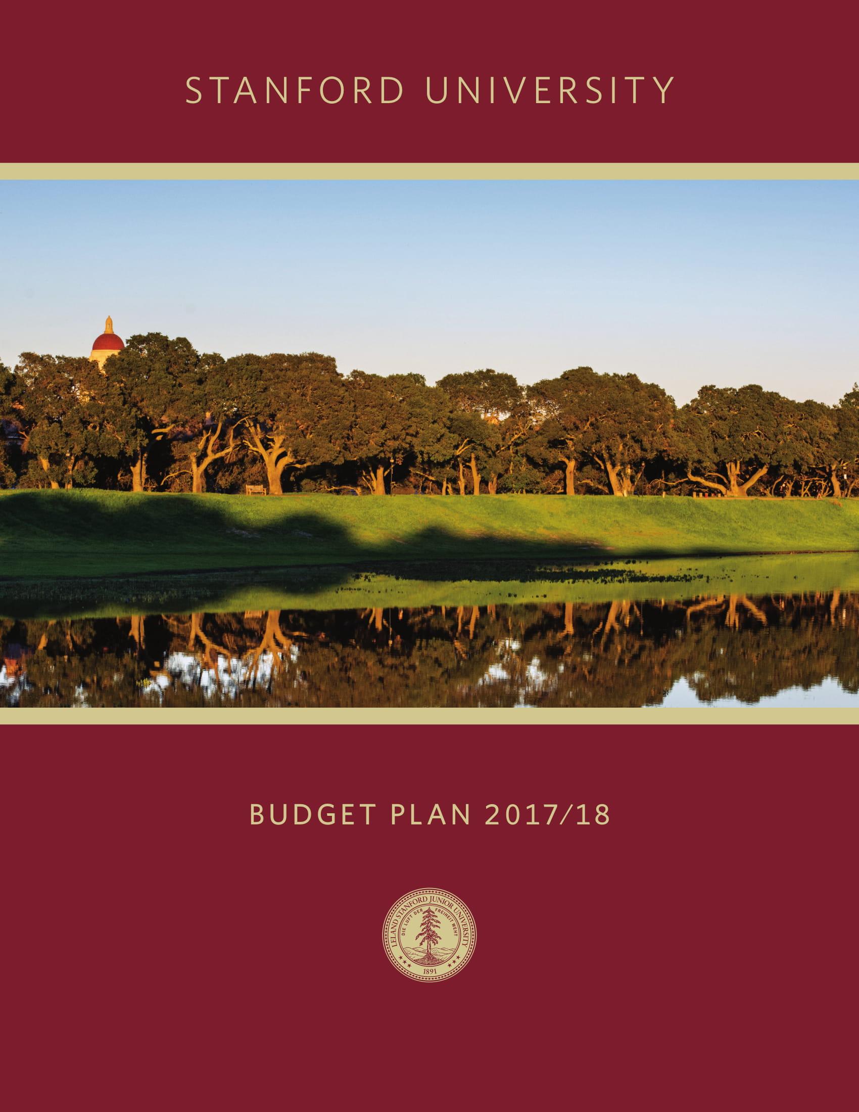 budget plan executive summary example 01