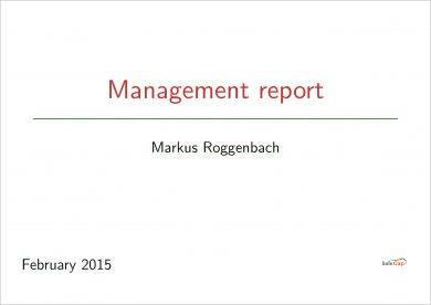business management report outline example