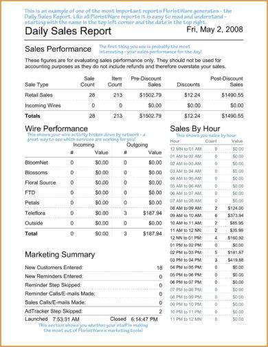company daily sales report example1