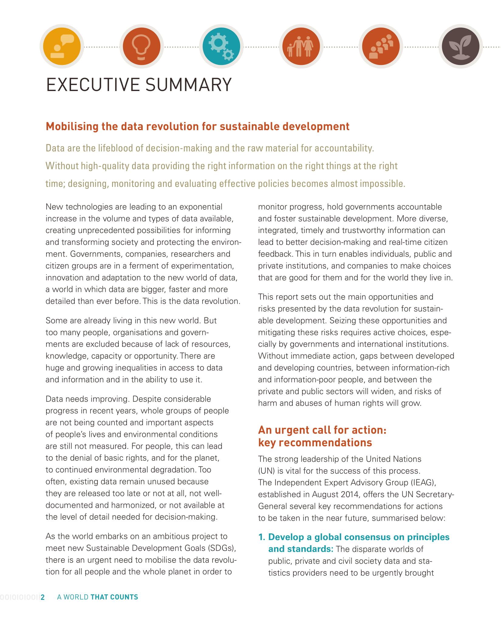 data revolution executive summary example