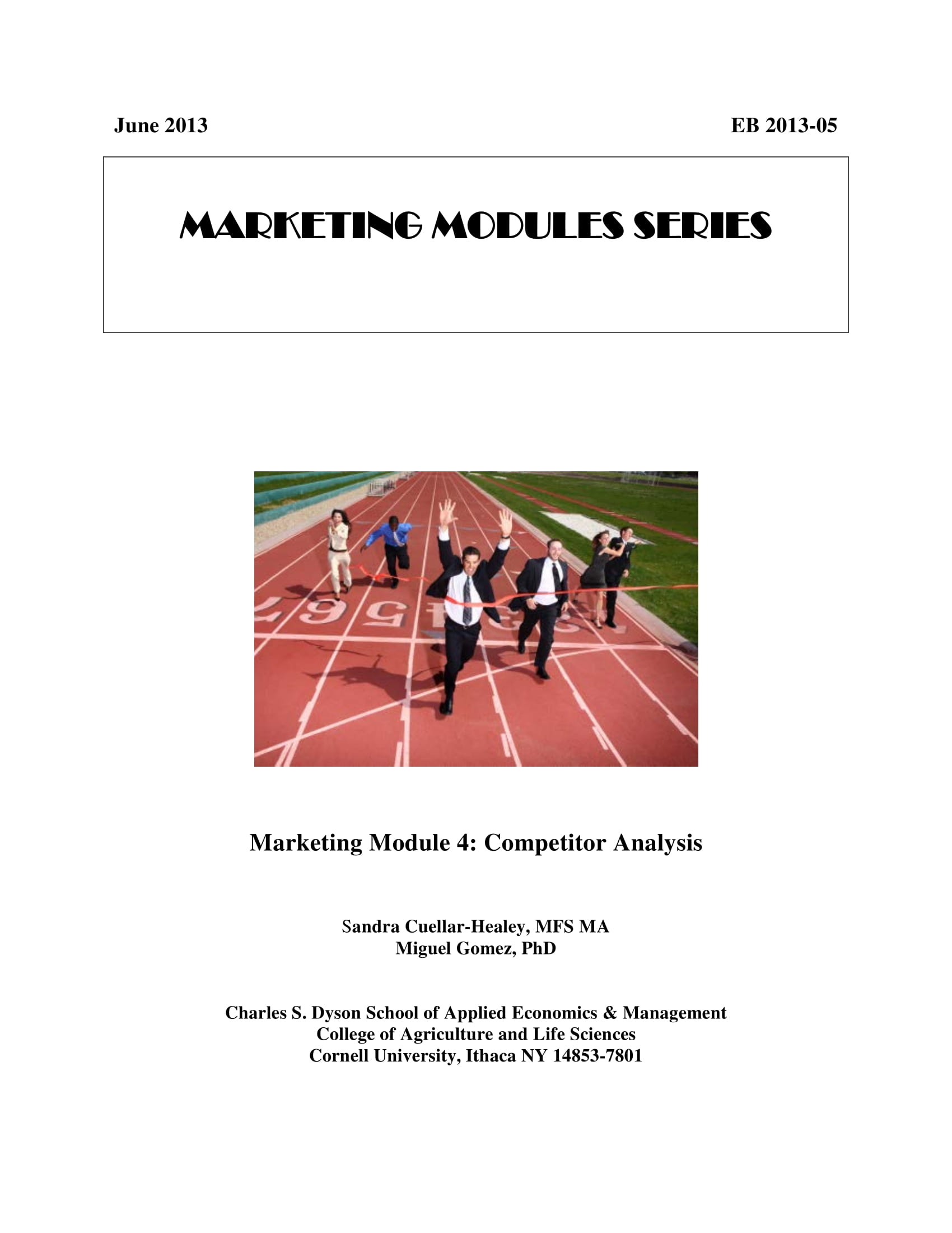 detailed competitor analysis example 01