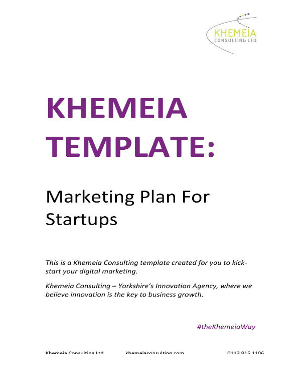 direct marketing plan for startups example