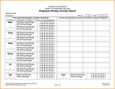 employee weekly activity report1