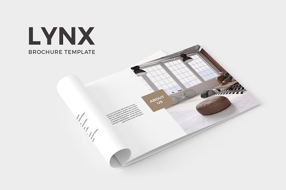 furniture lynx brochure catalog template example