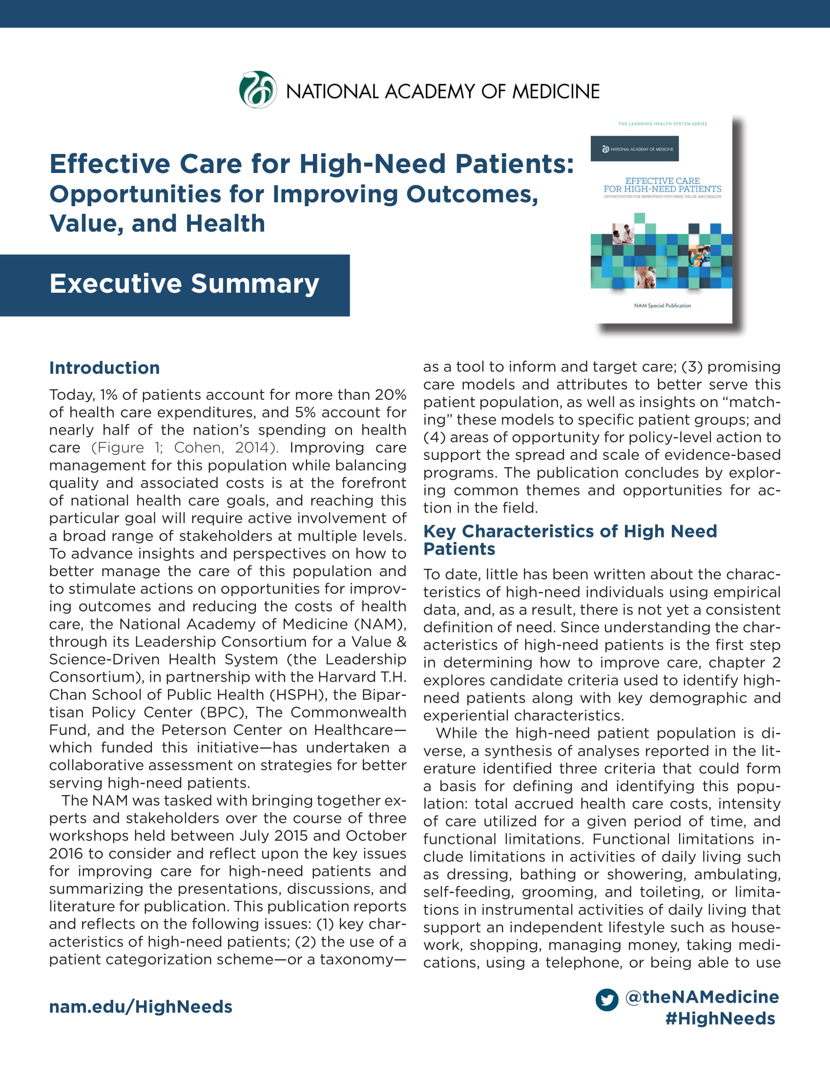 high needs patient care executive summary example