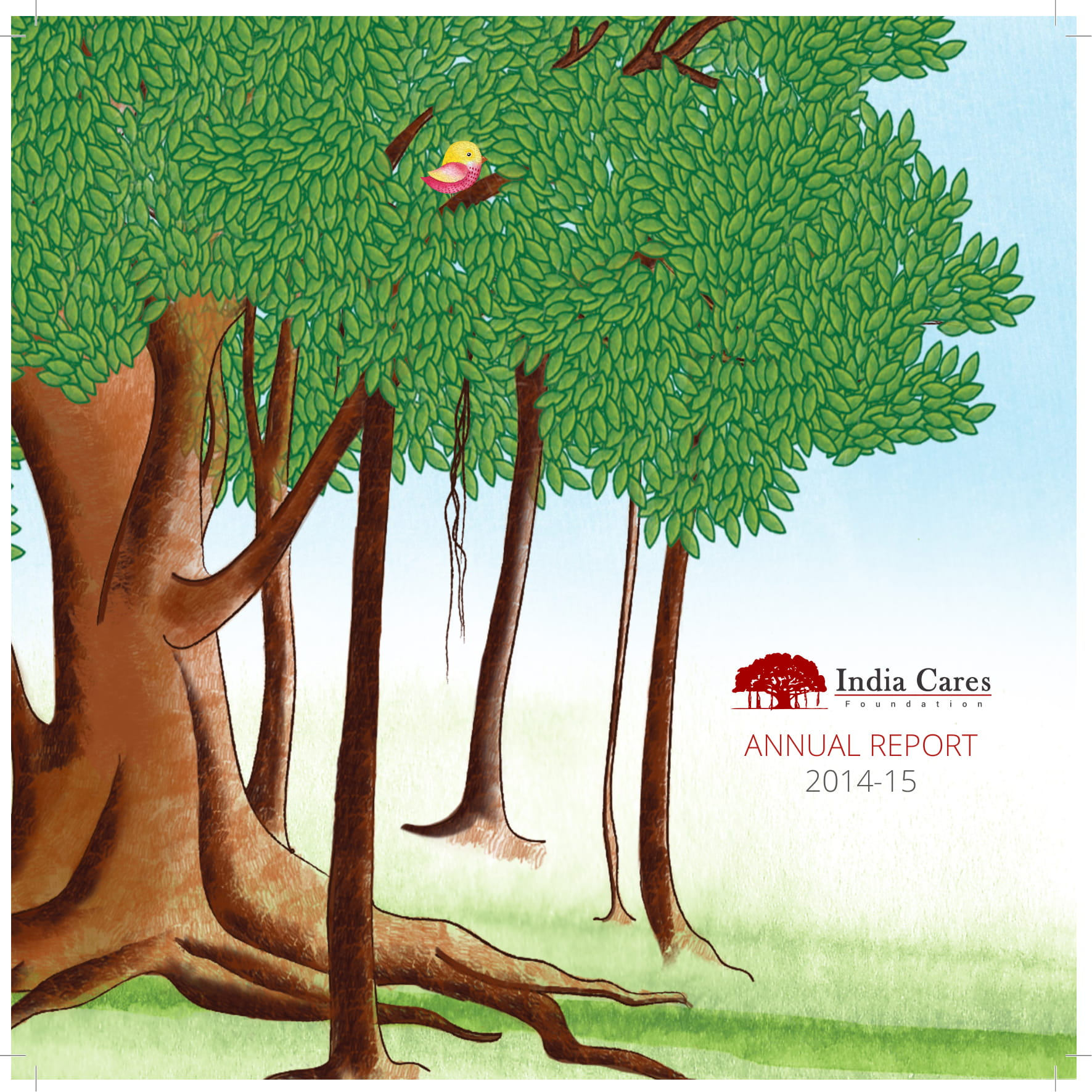 india cares ngo annual report example