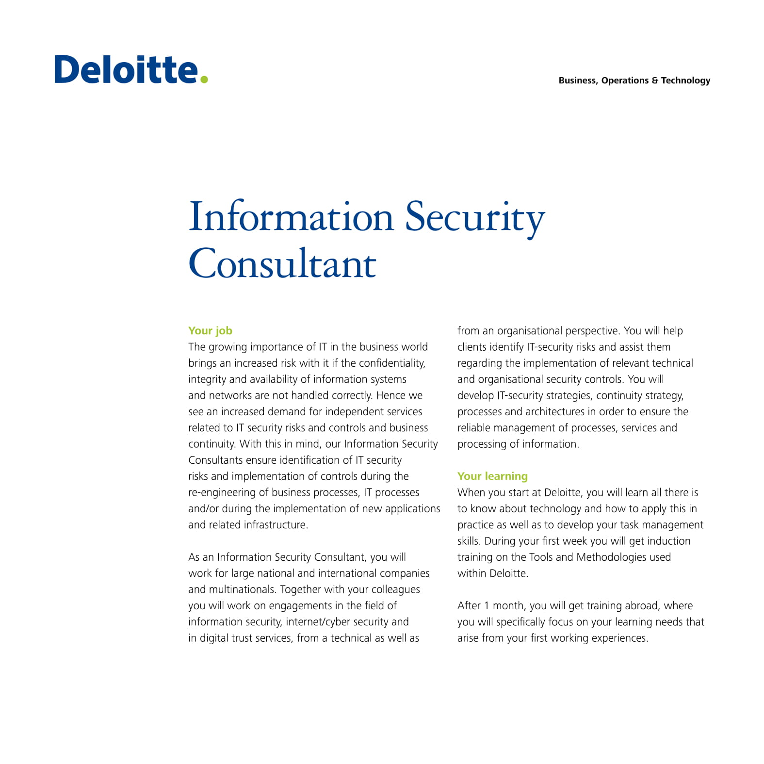 information security consultant