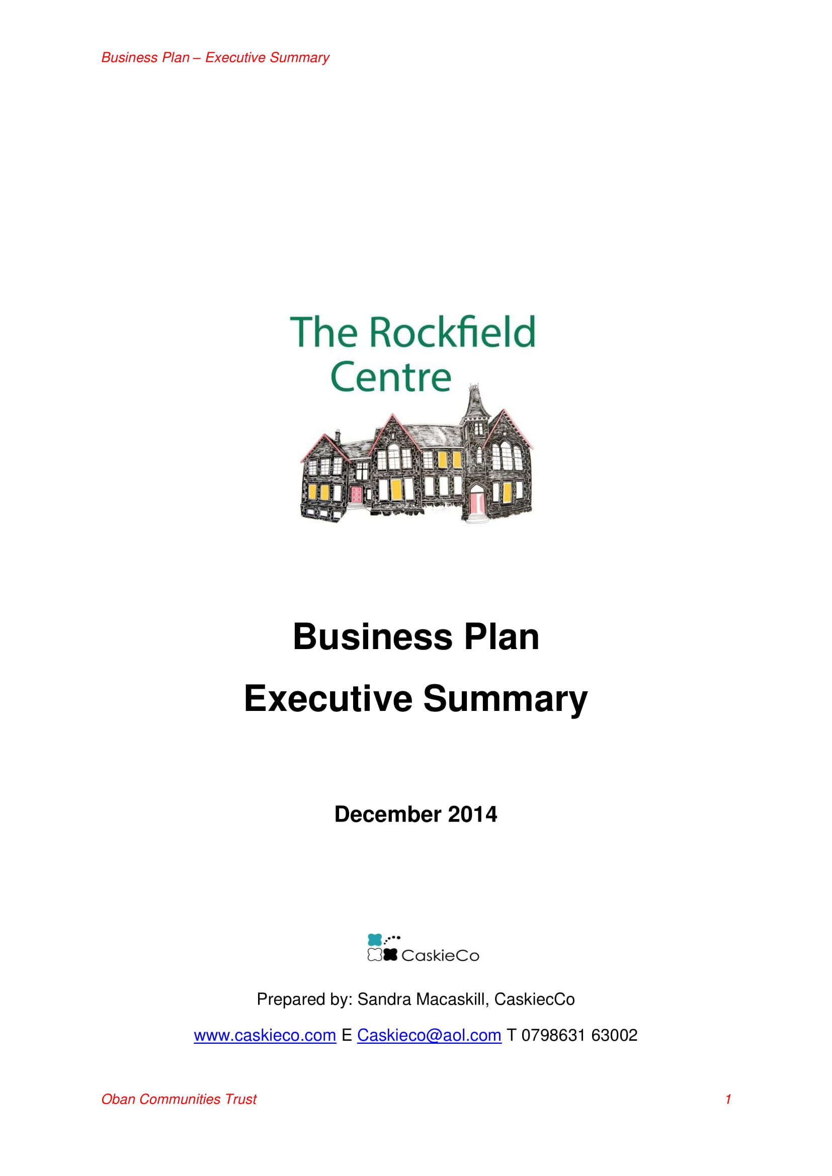 lengthy business plan executive summary example
