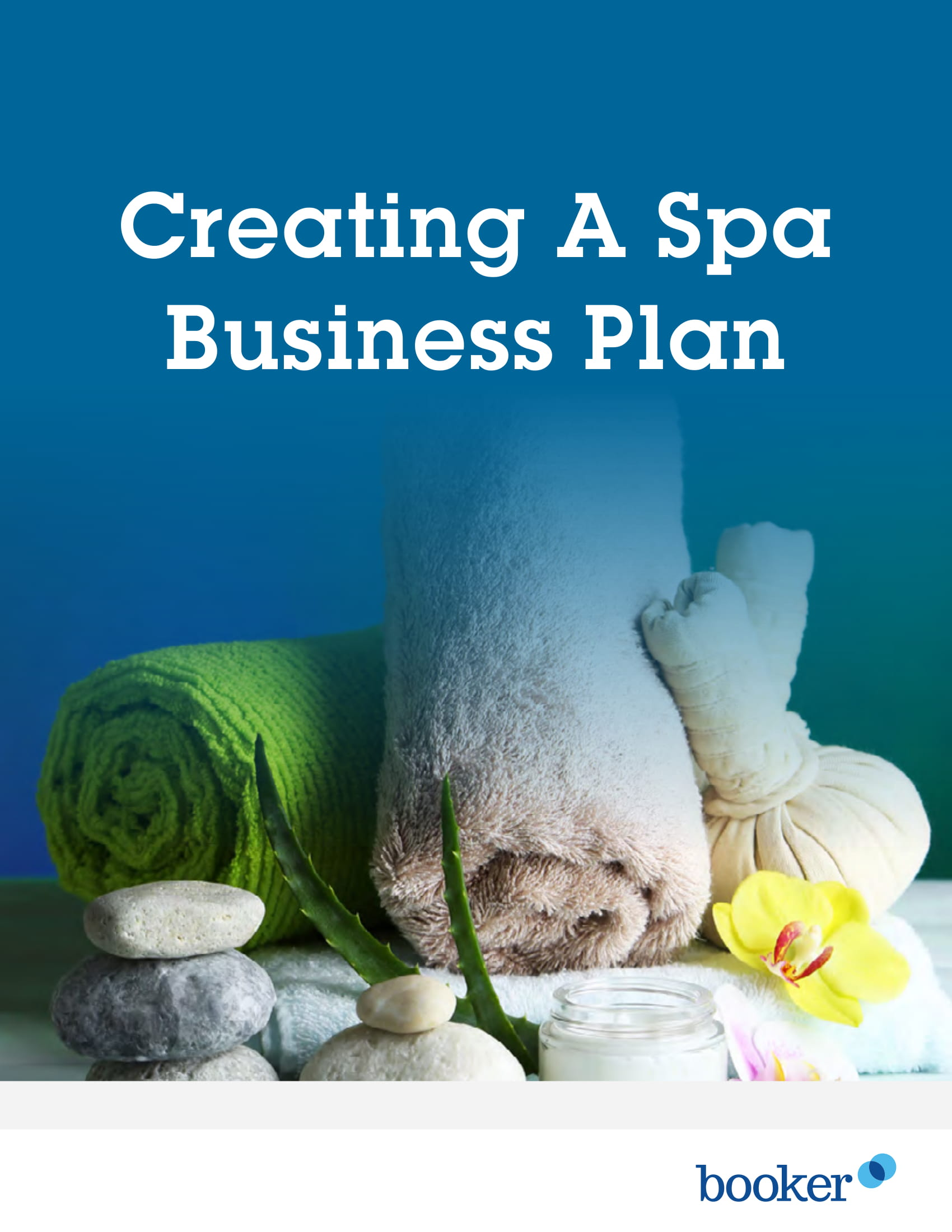 massage therapy and spa business plan format example 01