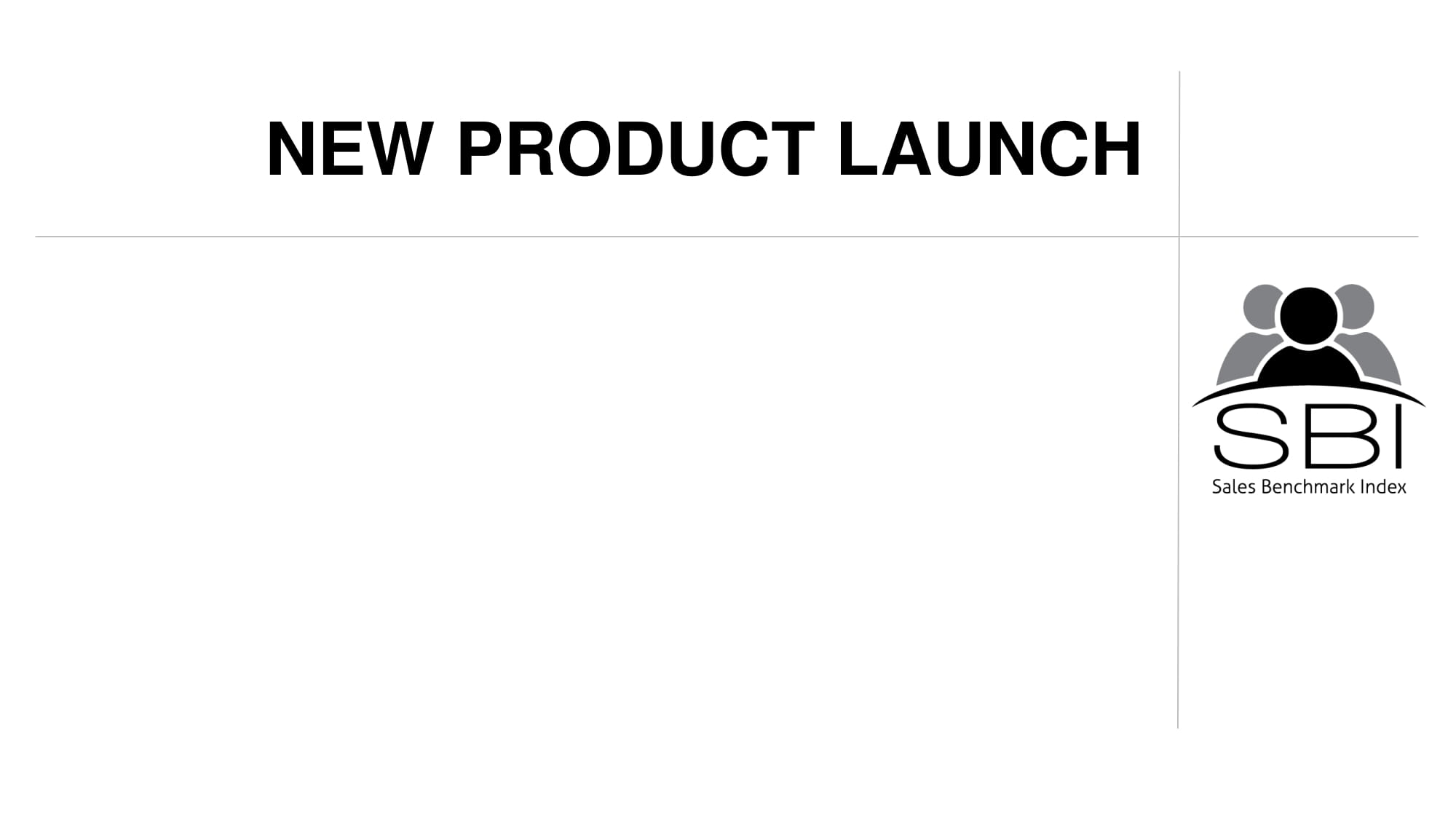 new product launch and financial analysis example