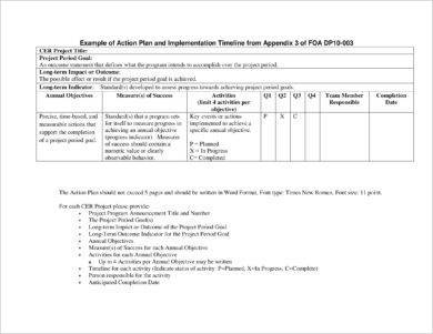 one page project action plan example1